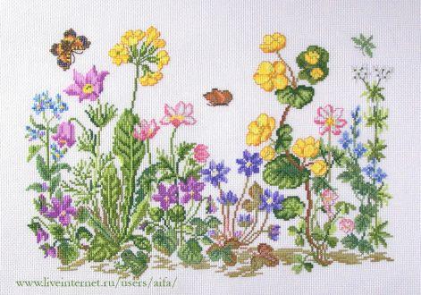 Картинки камелия цветок